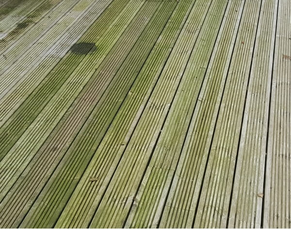 Mould and Algae on wooden decking can be slippery and dangerous