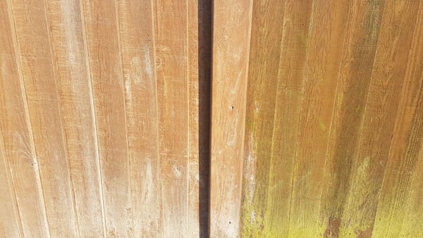 cleaning-mould-algae-from-fence-panels