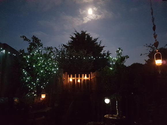 subtle garden lighting to create atmosphere